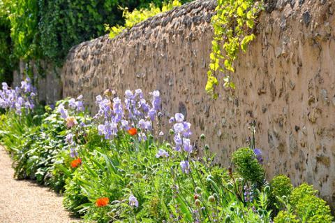 Asnières_ruelle fleurie