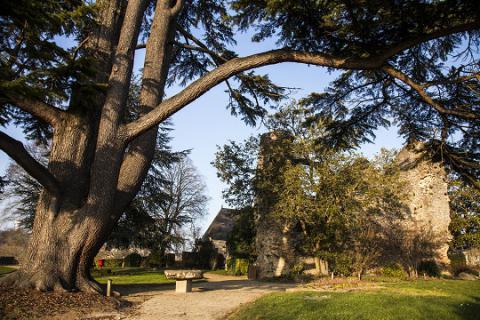 Fresnay-vestiges du château-crédit J.-P. Berlose